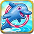 我的海豚表演4