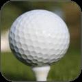 迷你的高尔夫